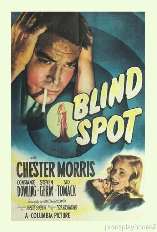 Blind Spot: DVD, 1947, Chester Morris, Constance Dowling, Obscure Film Noir product photo
