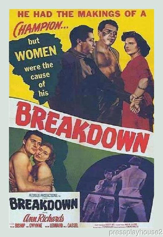 Breakdown: DVD, 1952, Ann Richards, Sheldon Leonard, Obscure Film Noir product photo
