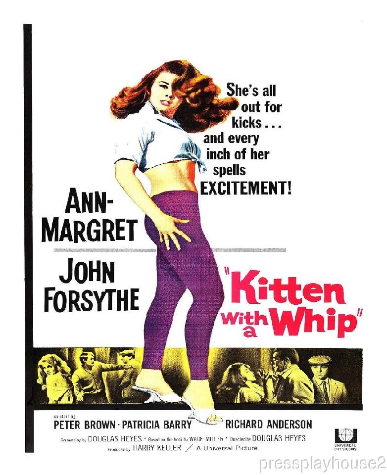 Kitten With A Whip: DVD, 1964, Ann-Margret, John Forsythe, Stunning Teen Psycho Classic! product photo