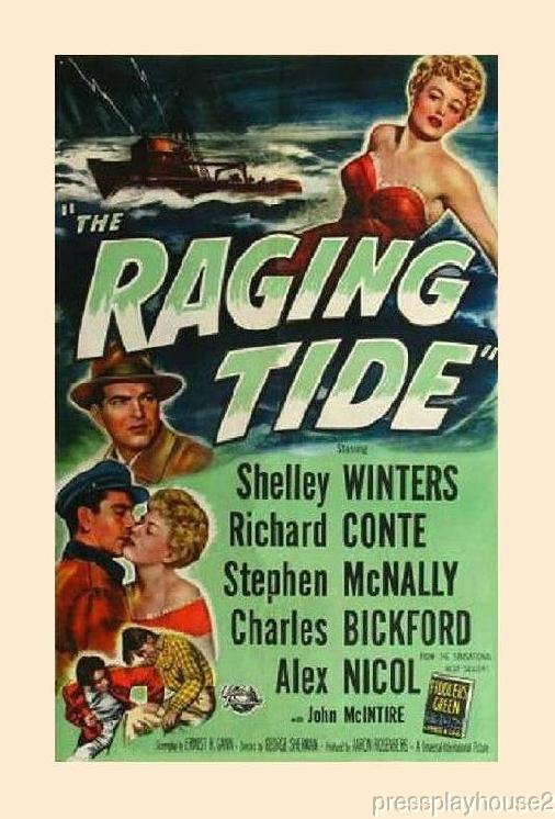 The Raging Tide: DVD, 1951, Shelley Winters, Richard Conte, Stephan Mcnally, Rarely Seen Film Noir product photo