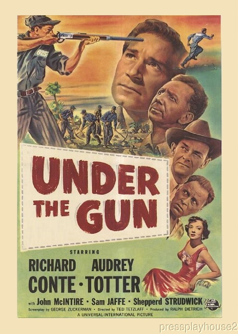 Under The Gun: DVD, 1951, Richard Conte, Audrey Totter, Sam Jaffe, Rare 50s Crime Noir product photo