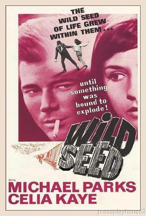 Wild Seed: DVD, 1965, Michael Parks, Celia Kaye, Rare Melodrama Gem, Full Uncut 99 Minute Version!! product photo