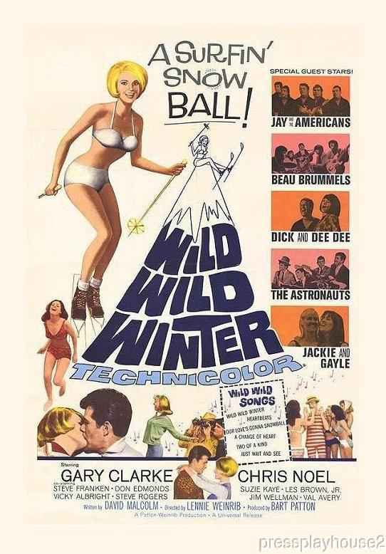 Wild Wild Winter: DVD, 1966, Chris Noel, Beau Brummels, Hard-To-Find Teen Film, Widescreen product photo